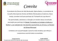Câmara de João Monlevade sedia debate sobre o combate à violência contra a mulher