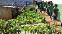 Câmara e Prefeitura desenvolvem ação ambiental na Escola Cicinha Moura